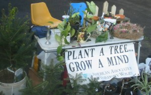 farmers-mkt-plant-tree-grow-mind-banner